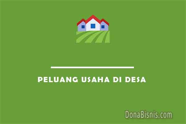 peluang usaha di desa